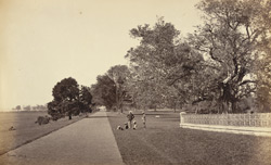 View in Barrackpore Park - Government House Walk